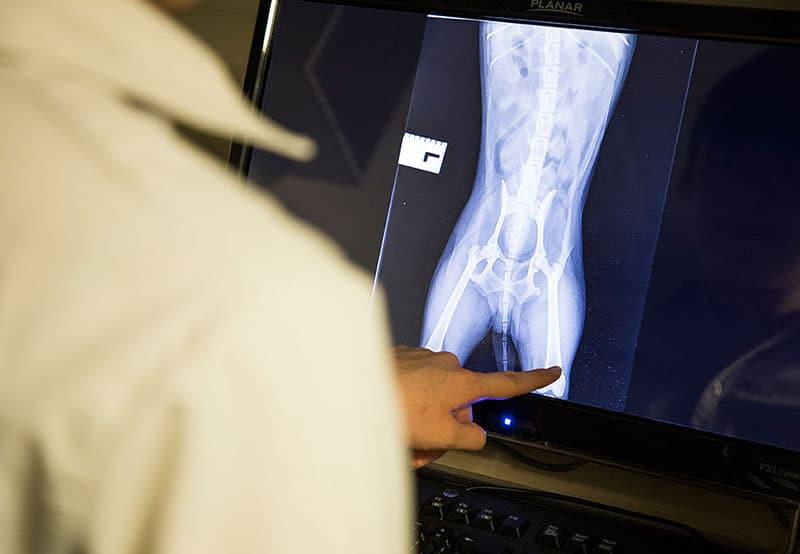 Digital and Dental Radiology